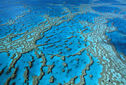 Ai Prints - Aerial View Of Coral Formations Print by Jean-Paul Ferrero