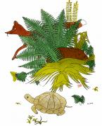 Hare Photo Posters - Aesop: Tortoise & The Hare Poster by Granger