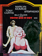 Some Like It Hot Prints - Affenpinscher Some Like It Hot Movie Poster Print by Sandra Sij