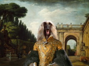 Afghan Hound Paintings - Afghan Hound-The afternoon promenade in Rome  Canvas Fine Art Print by Sandra Sij