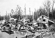 Floods Photos - African Americans Left Homeless by Everett