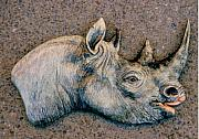 Wildlife Ceramics Metal Prints - African Black Rhino Metal Print by Dy Witt