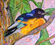 Starlings Paintings - African blue eared starling by Heather Lennox