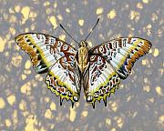 Insects Mixed Media Metal Prints - African Butterfly Metal Print by Mindy Lighthipe
