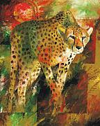 Cheetah Painting Prints - African Cheetah Print by Christiaan Bekker