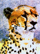Cheetah Tapestries - Textiles - African Cheetah by Paul Lee