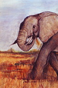 Hot Artist Drawings - African Elephant by Rebecca Lilley