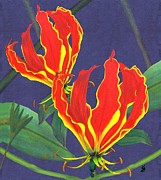 Flower Tapestries - Textiles Framed Prints - African Flame Lily Framed Print by Sylvie Heasman