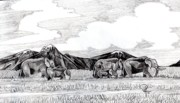 Elephants Drawings - African Giants by Doug Hiser