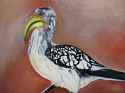 Hornbill Painting Framed Prints - African Ground Hornbill Framed Print by Mary Rimmell