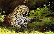African Cat Prints - African Leopard Print by Paul Dene Marlor