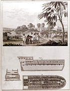 Slave Trade Framed Prints - African Slave Trade Framed Print by Granger