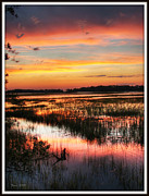 Fripp Prints - After Sunset Print by Farol Tomson