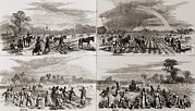 African Americans Prints - After The Civil War Many African Print by Everett