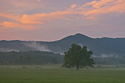 Gsmnp Prints - After the rain in Cades Cove TN Print by Ulrich Burkhalter