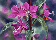 Wild Flower Art - After the Rain by Sharon Freeman