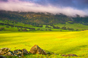 Green Hills Prints - After The Storm Print by Marc Crumpler