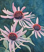 Coneflowers Prints - Afterglow II Print by Jenny Armitage