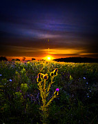 Environement Posters - Afterglow Poster by Phil Koch
