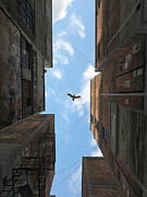 Clouds Digital Art Posters - Afternoon Alley Poster by Cynthia Decker