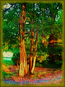 Tedxture Framed Prints - Afternoon Delight Framed Print by Judi Bagwell