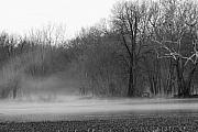 Mnkreations Metal Prints - Afternoon Fog Rising Metal Print by Michelle Kelnhofer