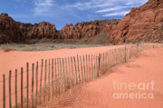 Pink Sand Posters - Afternoon in Snow Canyon Poster by Sandra Bronstein