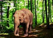 Elephants Digital Art Originals - Afternoon Stroll by Garry Staranchuk