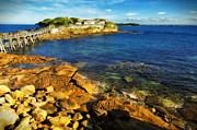 La Perouse Bay Posters - Afternoon Sun over Botany Bay Poster by Chase Lindberg