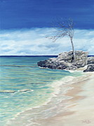 Bahamas Painting Metal Prints - Against the Wind Metal Print by Danielle Perry