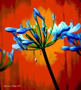 Agapanthus Art - Agapanthus by Christine Zipps