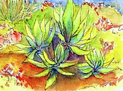 Blooming Paintings - Agave Chorus by Nancy Matus