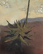 Earth Tone Painting Framed Prints - Agave Framed Print by Fred Chuang