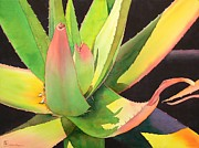 Cactus Posters - Agave Poster by Robert Hooper