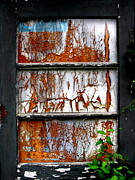 Amy Sorrell Art - Aged Door by Amy Sorrell