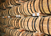 Wine Barrel Photos - Aging the Whisky by Kristin Elmquist