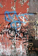 Graffitti Photos - Aging Walls by Reb Frost