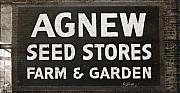 Agnew Posters - Agnew Seeds Roanoke Virginia Poster by Teresa Mucha
