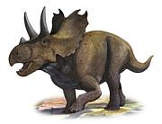 Agujaceratops Mariscalensis Print by Sergey Krasovskiy