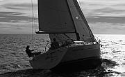 Sailing Metal Prints - Ahh what a life Metal Print by David Shuler