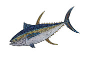 Tuna Prints - Ahi Print by Carol Lynne