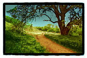 Ranch Pyrography Posters - Ahmanson Ranch Calabasas 2 Poster by Karl Preston