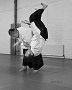 Martial Arts Posters - Aikido Up and Down Poster by Frederic A Reinecke