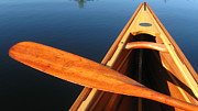 Canoe Pyrography Metal Prints - Aim North Metal Print by Waldemar Okon