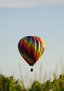 Balloon Fest Framed Prints - Air Balloon 1512 Framed Print by Terri Winkler
