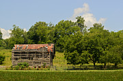 Tennessee Barn Prints - Air Conditioned Barn 10 Print by Douglas Barnett