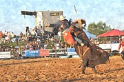 Rodeo Bulls Posters - Airborne Poster by Bill Willemsen