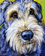 Terriers Framed Prints - Airedale Terrier Cutie Portrait Framed Print by Dottie Dracos