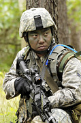 Airman Scans The Tree Line For Enemy Print by Stocktrek Images