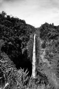 Waterfalls Rivers And Lakes - Akaka Falls - BW by Greg Vaughn - Printscapes